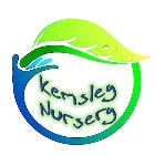 Kemsley Primary Academy